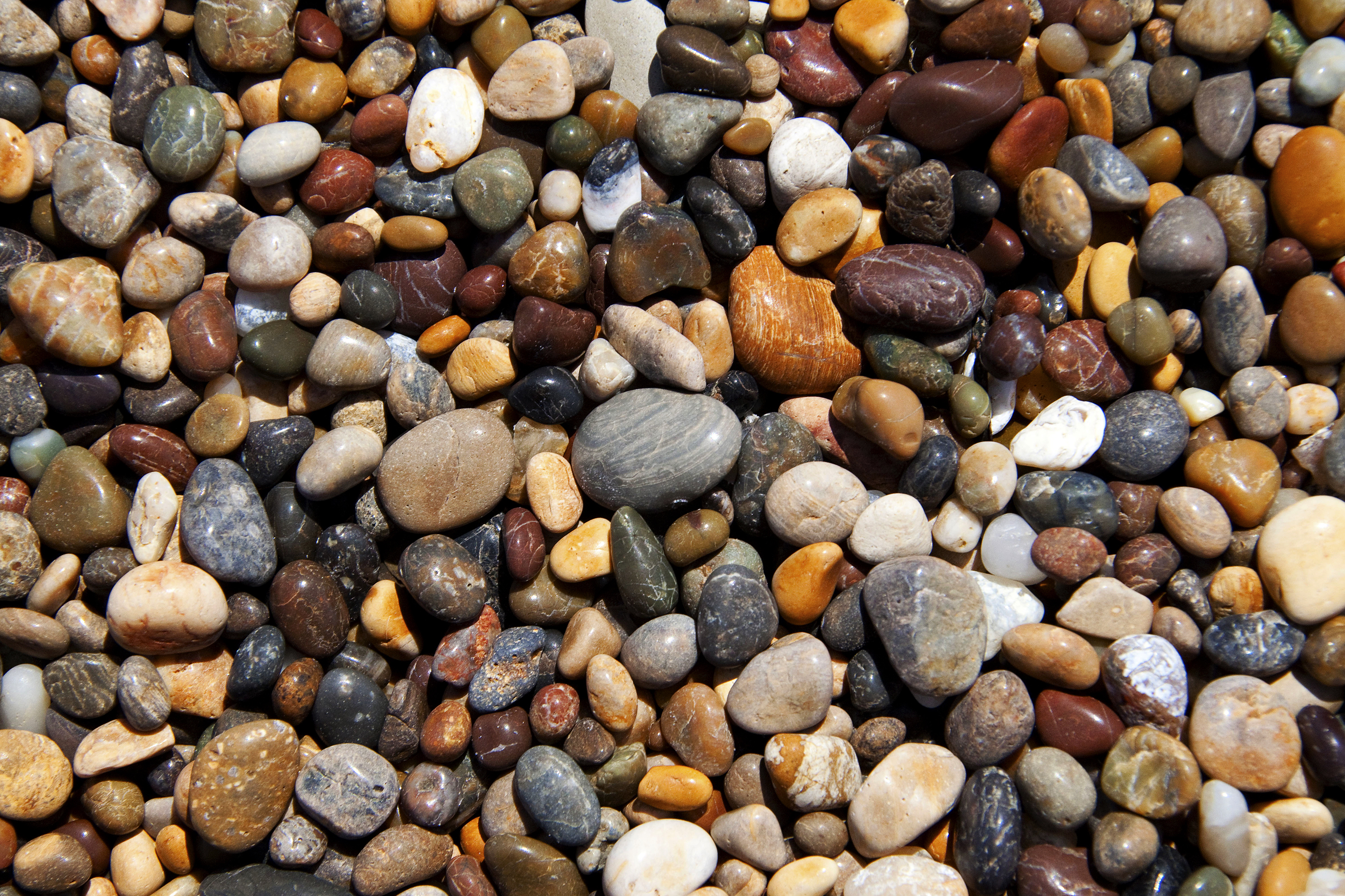 Image result for pebbles